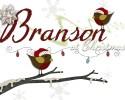 Branson - Trips
