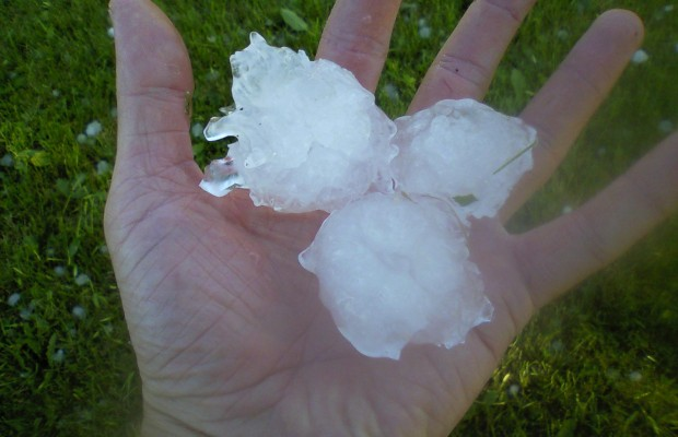 Severe Hail Damages Crops In Brown County South Dakota