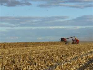 Environmental Working Group Wants Crop Insurance Tied To Conservation