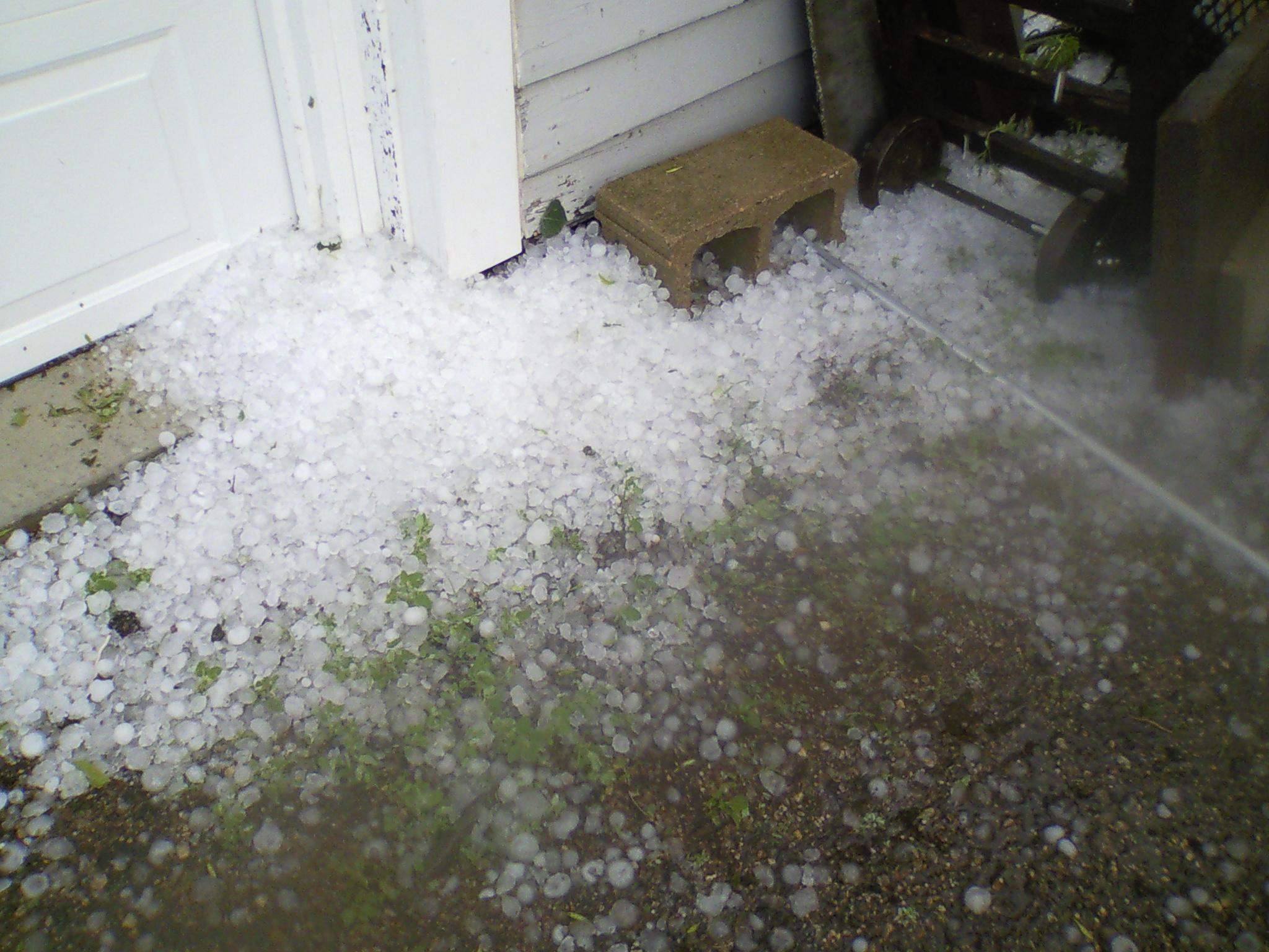 Hail Damages Crops In Rock County Minnesota