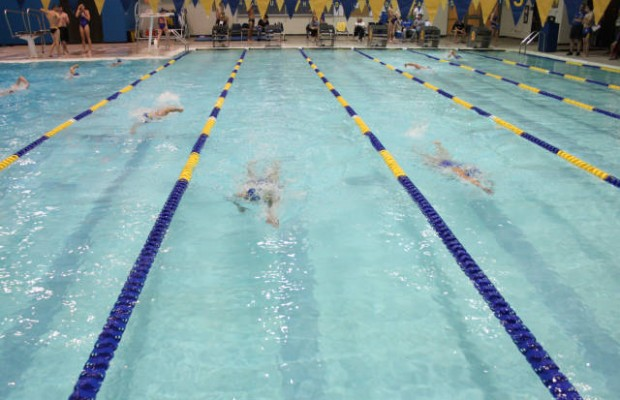Coyotes Set Swimming Schedule