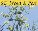 Sd weed and pest graphic